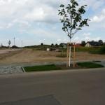 Grundstück Anfang Juni