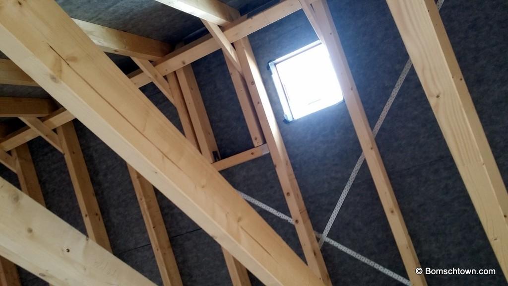 Schornsteinbereich Dach und Prüföffnung