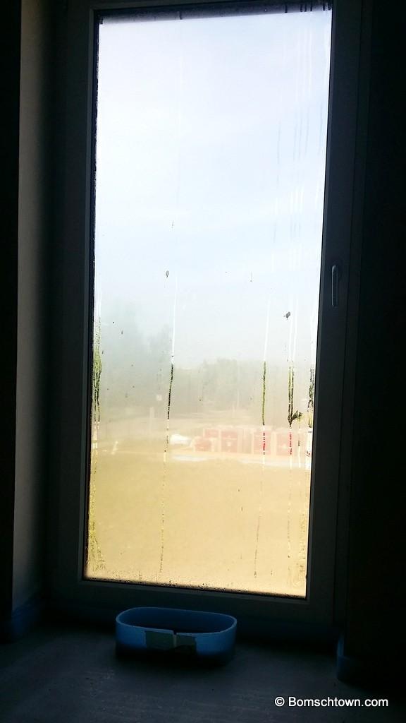 Haus schwitzt