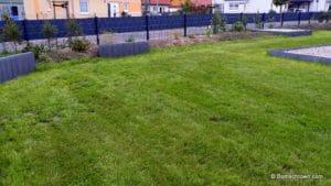 Kurz geschorener Rasen