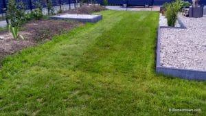 Rasen mit erkennbaren Maehrillen