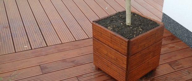 Pflanzgefäß mit Kunstoffeinsatz und Pflanze