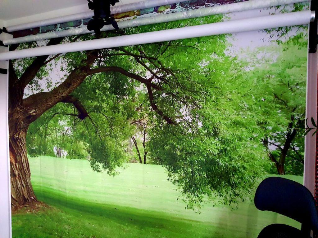 Fotohintergrund Baum auf Wiese